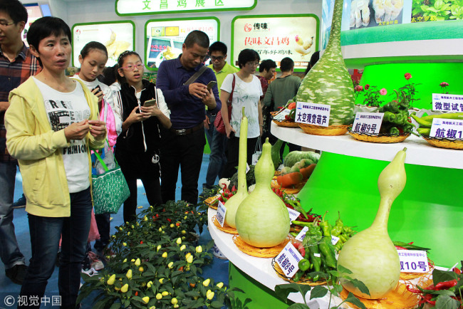People visit space vegetables in Wenchang, Hainan Province, on December 12 2015. [Photo; VCG]