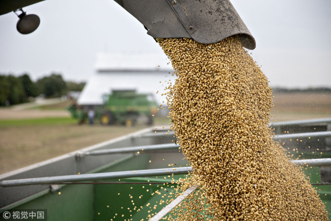 Soybeans are loaded into a grain cart during harvest in Wyanet, Illinois, U.S., on Tuesday, Sept. 18, 2018. [File photo: VCG]