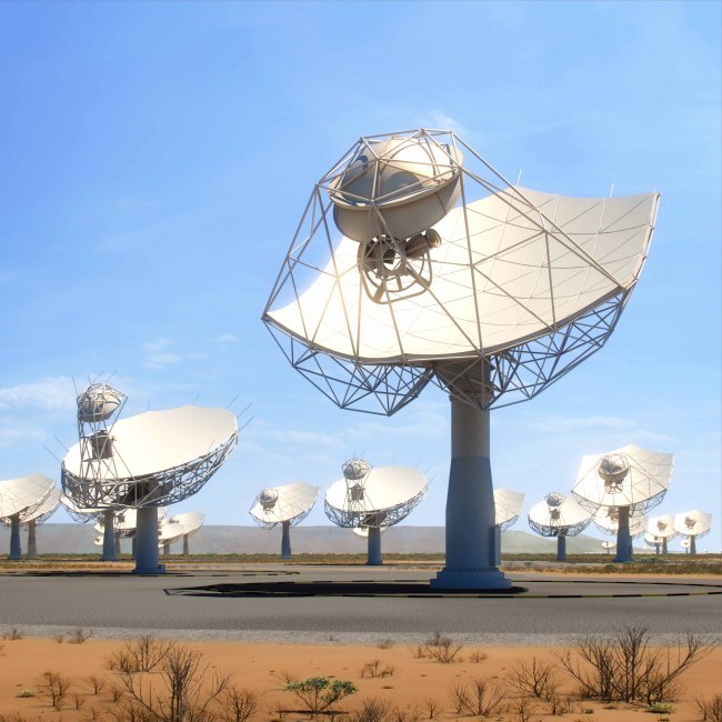 A view of the Square Kilometer Array in South Africa. [Photo: SKA Organization]